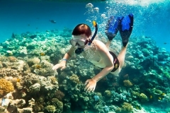 snorkeling_alanya_kemer_side_antalya_holiday-min