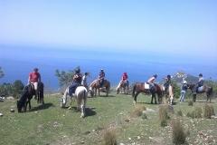 alanya-horse