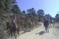 horse-riding-tour